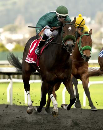 Slew's Tiznow Sons Run One Two in Grade 3 El Camino Derby